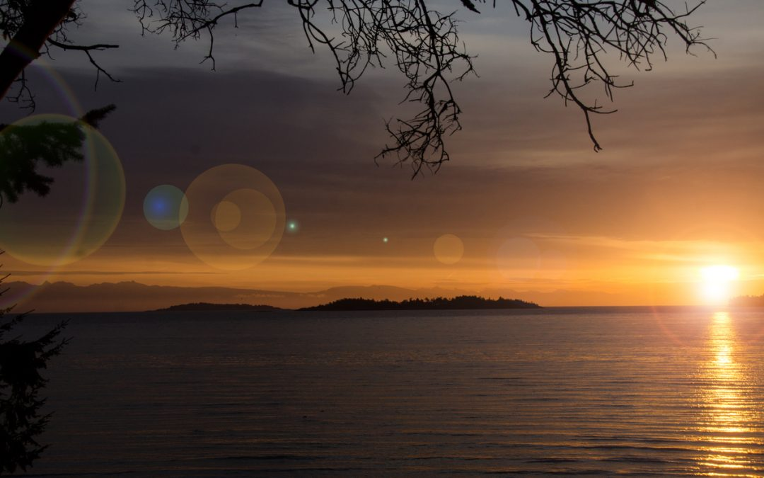 Coming Early 2021 • Two New Oceanfront Lots Overlooking Parksville's Beach